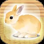 治愈兔兔养成 3DM汉化版