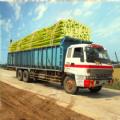 甘蔗卡车进化下载