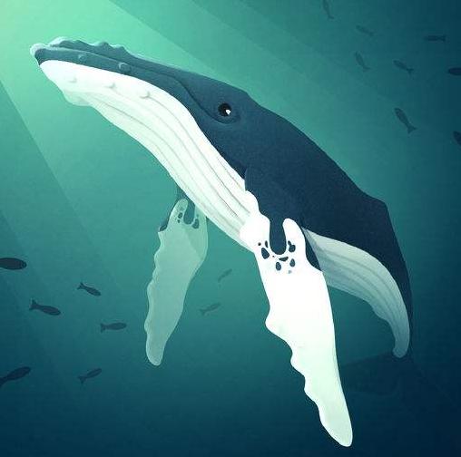 《深海水族馆》升级攻略