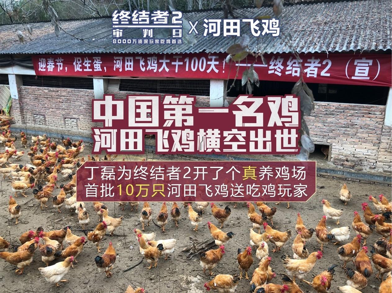 网易为了吃鸡 丁磊真的给终结者2开了养鸡场