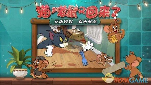 《猫和老鼠》角色对比推荐