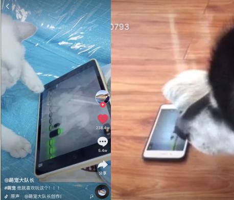 《永不言弃:黑洞!》安卓也可以玩啦!但猫咪可玩不了