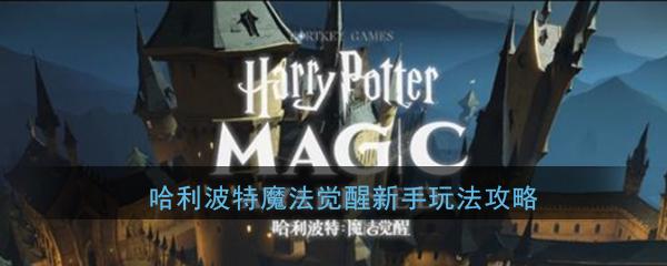 《哈利波特:魔法觉醒》新手玩法攻略