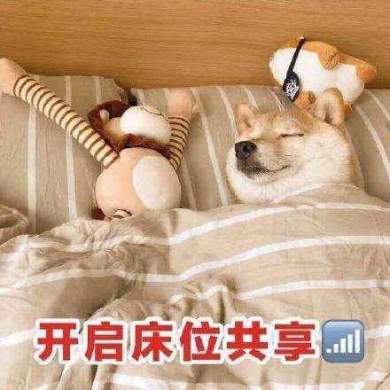 抖音对方已开启床位共享表情包