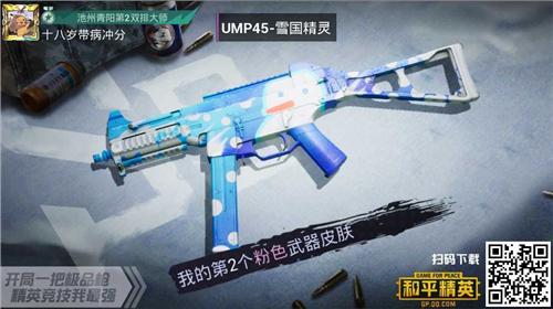 《和平精英》UMP45雪国精灵满级价格介绍