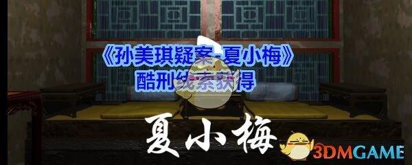 《孙美琪疑案-夏小梅》酷刑线索获得
