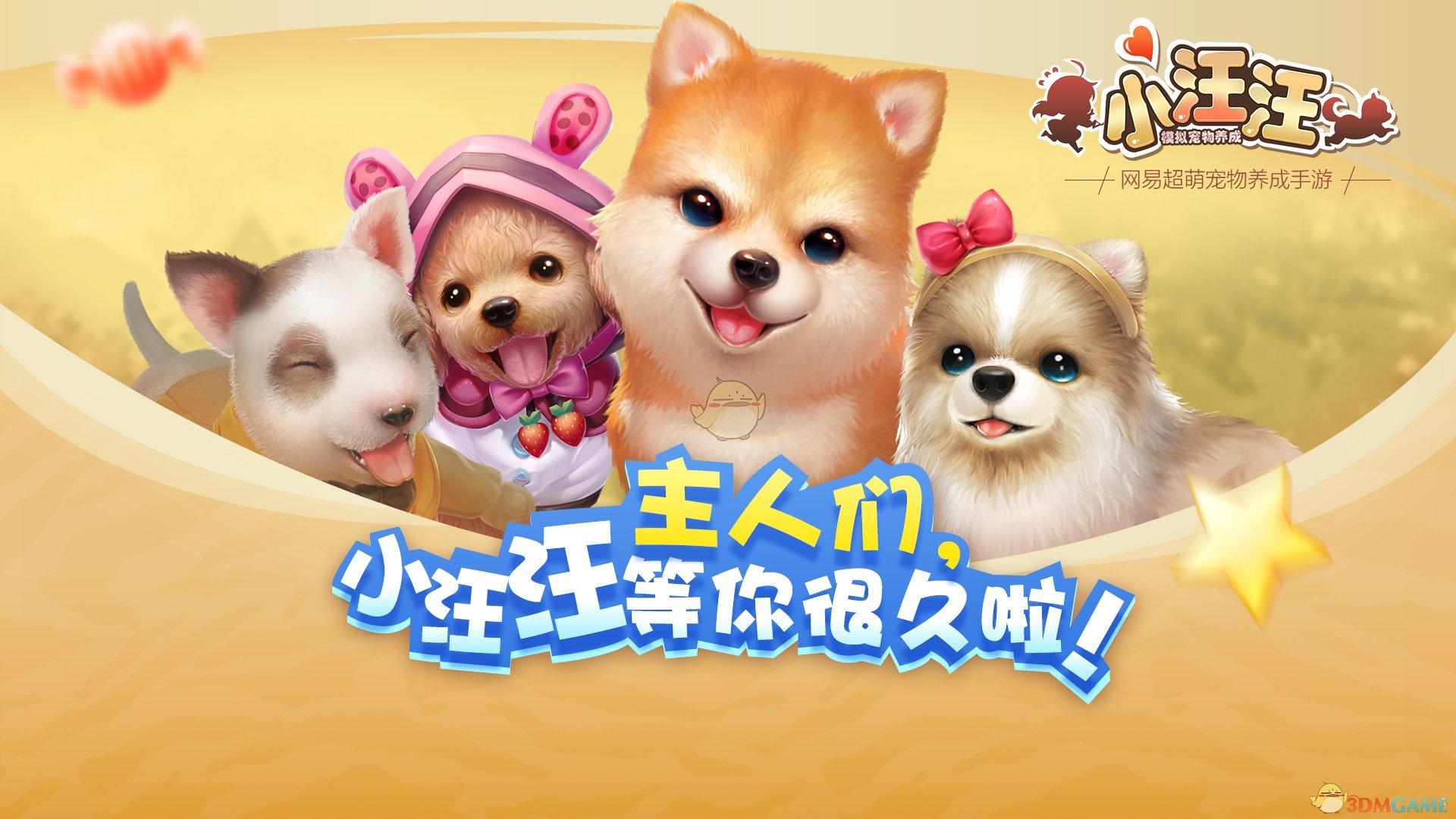 还记得在宠物中心领养狗狗时的激动心情,那把萌汪抱回家的温馨场景
