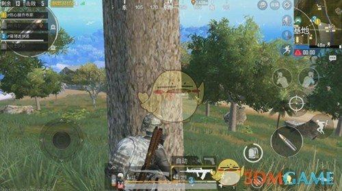 《绝地求生:刺激战场》雨林地图玩法攻略