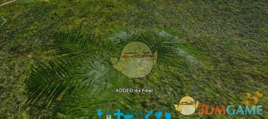 《方舟:生存进化》纤维采集攻略