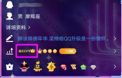 《QQ》大王超级会员图标点亮方法